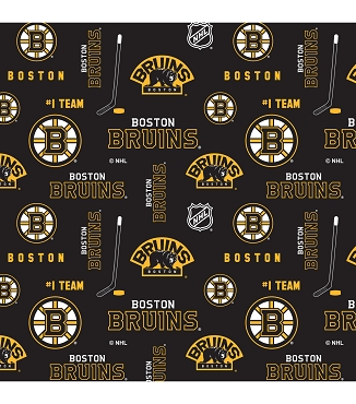 BOSTON BRUINS -- Greek T-Shirt with Stitched Double Fabric Letters